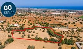 Zemljište 11037 m² u Larnaka