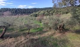 Zemljište 14000 m² na Sitoniji (Halkidiki)