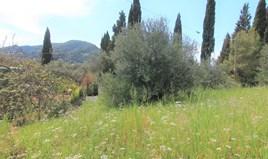 Arsa 1206 m² Korfu'da