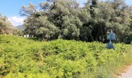 Land 2000 m² auf Korfu