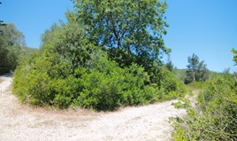 أرض 4000 m² في كورفو