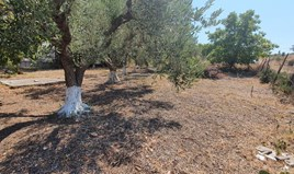 Zemljište 550 m² na Kasandri (Halkidiki)