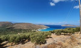 Земельна ділянка 6775 m² на Криті