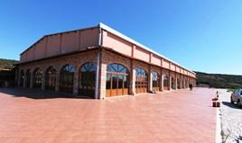 Бізнес 1060 m² в Салоніках