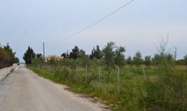 地皮 4000 m² 位于科夫岛