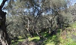Land 160 m² in Corfu