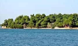 Land 4000 m² on the Euboea island