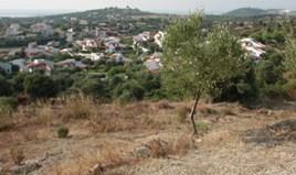 Terrain 7230 m² à Sithonia (Chalcidique)