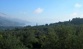 Arsa Korfu'da
