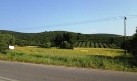 Zemljište 12000 m² na Sitoniji (Halkidiki)