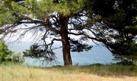 Zemljište 4000 m² na Sitoniji (Halkidiki)