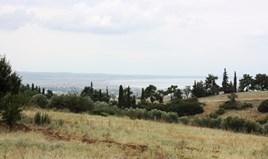 أرض 4200 m² في  تسالونيكي