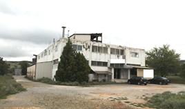 Business 1400 m² in Thessaloniki