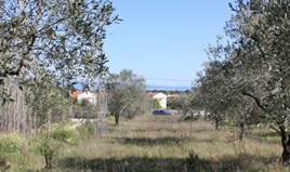 Zemljište 17643 m² na Sitoniji (Halkidiki)