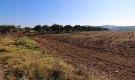 Земельный участок 40000 m² в пригороде Салоник