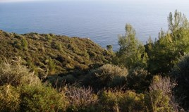 Zemljište 6200 m² na Kasandri (Halkidiki)