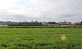 Zemljište 9000 m² na Kasandri (Halkidiki)