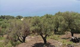 Земельна ділянка 4010 m² на Іонічних островах