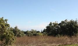 Działka 4286 m² na Kassandrze (Chalkidiki)