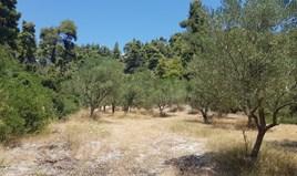Zemljište 6000 m² na Kasandri (Halkidiki)