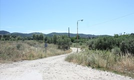 Zemljište 3500 m² na Sitoniji (Halkidiki)