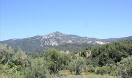 Land 4990 m² auf Sithonia (Chalkidiki)