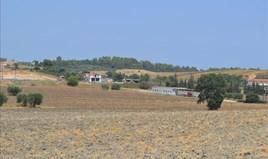 Парцел 6300 m² в Касандра (Халкидики)