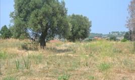 Land 15500 m² auf Kassandra (Chalkidiki)