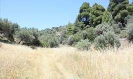 Zemljište 2000 m² na Sitoniji (Halkidiki)