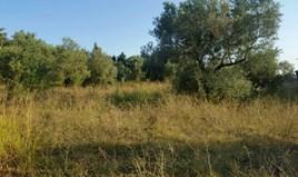 Zemljište 4250 m² na Kasandri (Halkidiki)