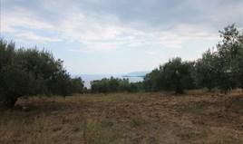 Land 4600 m² auf Sithonia (Chalkidiki)