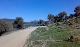 Land 116000 m² on the Euboea island