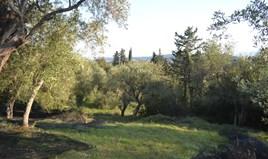 Земельна ділянка 8253 m² на о. Корфу