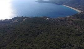 地皮 12415 m² 位于阿索斯山(哈尔基季基州)