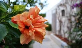 Villa 133 m² auf Kreta
