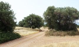 Land 302 m² auf Sithonia (Chalkidiki)
