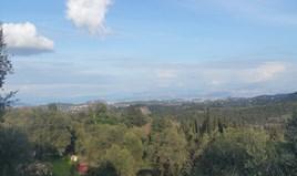 Land 12437 m² in Corfu