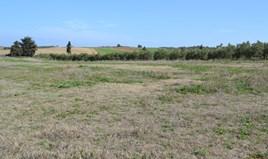 Zemljište 6375 m² na Kasandri (Halkidiki)