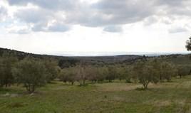 Zemljište 105000 m² na Halkidikiju