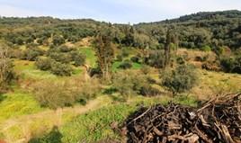 Arsa 8500 m² Korfu'da