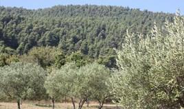 Zemljište 4023 m² na Sitoniji (Halkidiki)