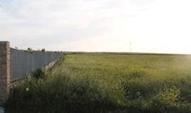 Zemljište 13500 m² na Kasandri (Halkidiki)
