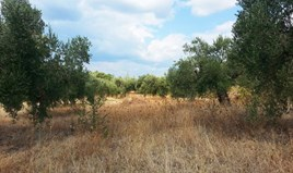 Zemljište 3780 m² na Sitoniji (Halkidiki)