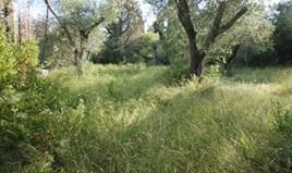Land 650 m² auf Korfu