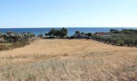 Land 7500 m² auf Kassandra (Chalkidiki)