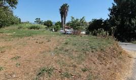 Land 40000 m² in Corfu