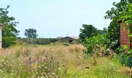Земельна ділянка 5000 m² в Халкидіках