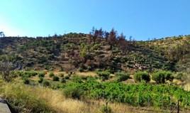 Land 6000 m² auf Sithonia (Chalkidiki)