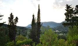 Γή 2800 m² στην Κέρκυρα