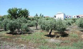 Zemljište 1000 m² na Sitoniji (Halkidiki)